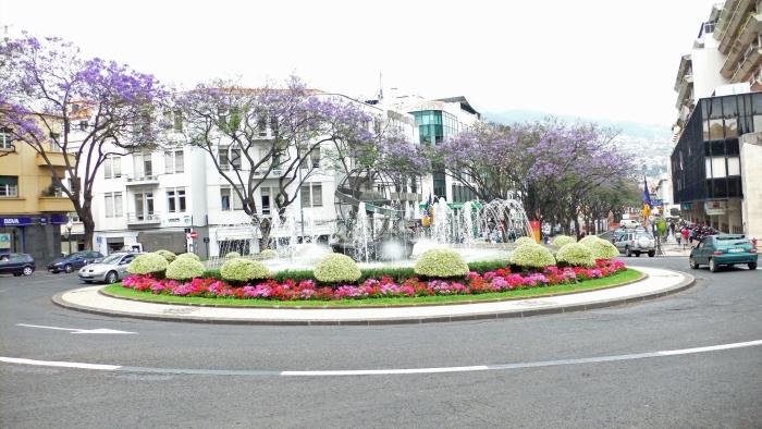 In der Hauptstadt Funchal …